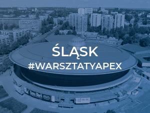 CANBI z warsztatami Oracle APEX Akademia na Śląsku